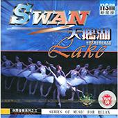 《天鹅湖 世界古典音乐经典名曲》